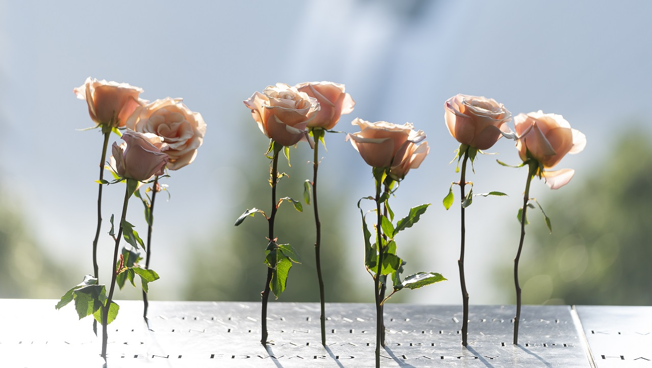 Seven dusty pink long-stemmed roses stand in the Memorial parapet.