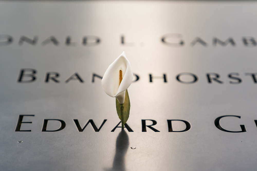 A single white lily is left in the names parapet.
