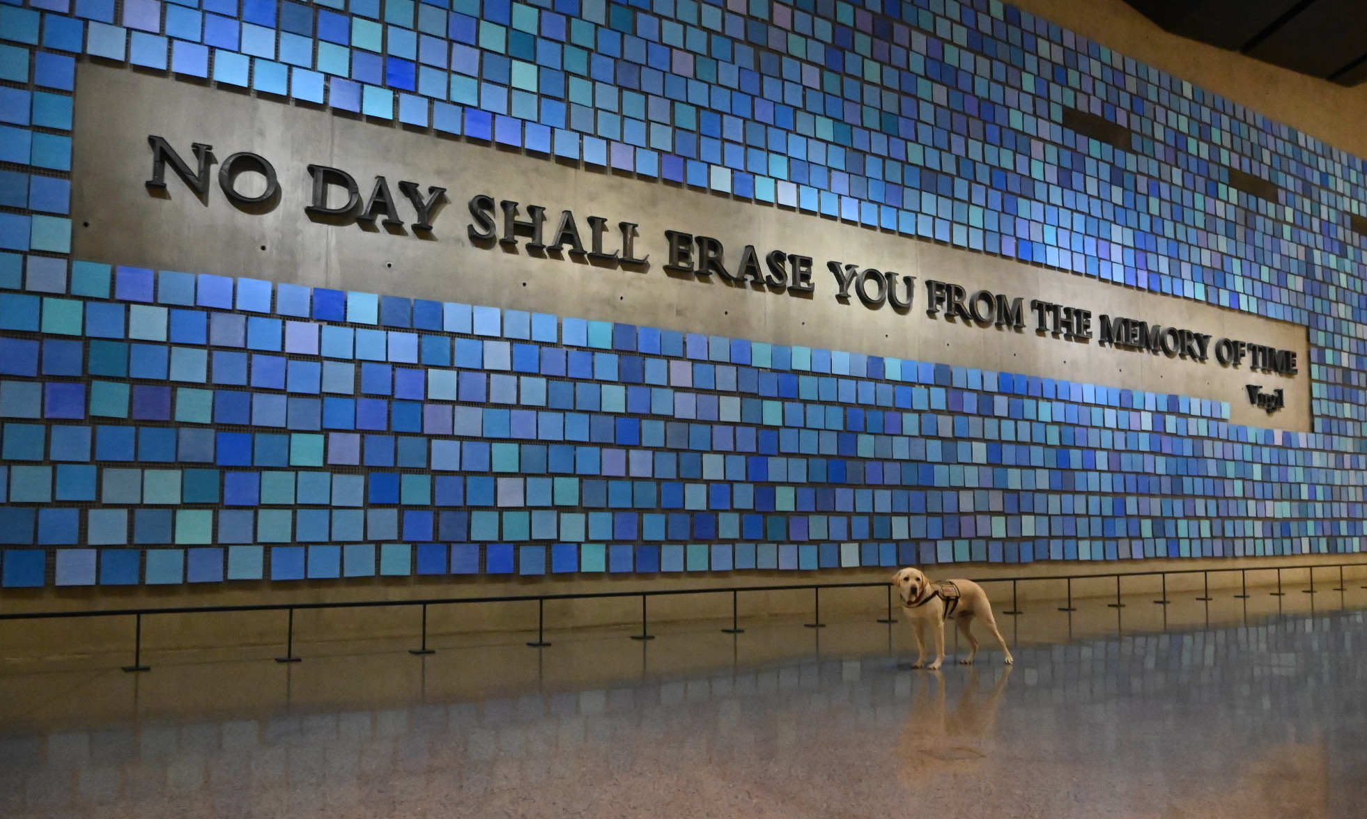 "A yellow Labrador retriever stands in front of a large work of art consisting of many squares in varying shades of blue, with ""No day shall erase you from the memory of time"" emerging from the squares as iron lettering."