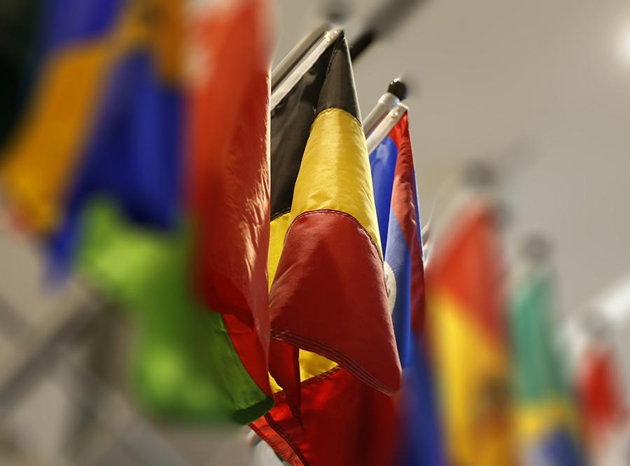 The national flag of Belgium is seen among other international flags positioned on a wall at the 9/11 Memorial Museum.