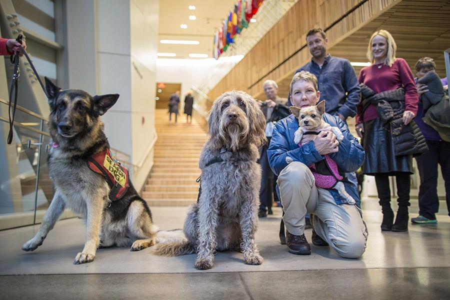 Three dogs named Kobuk, Gander, and Mango stand the entrance to the 9/11 Memorial Museum. Mango is being held by her owner, a middle-aged woman. The flags of various countries hang overhead.