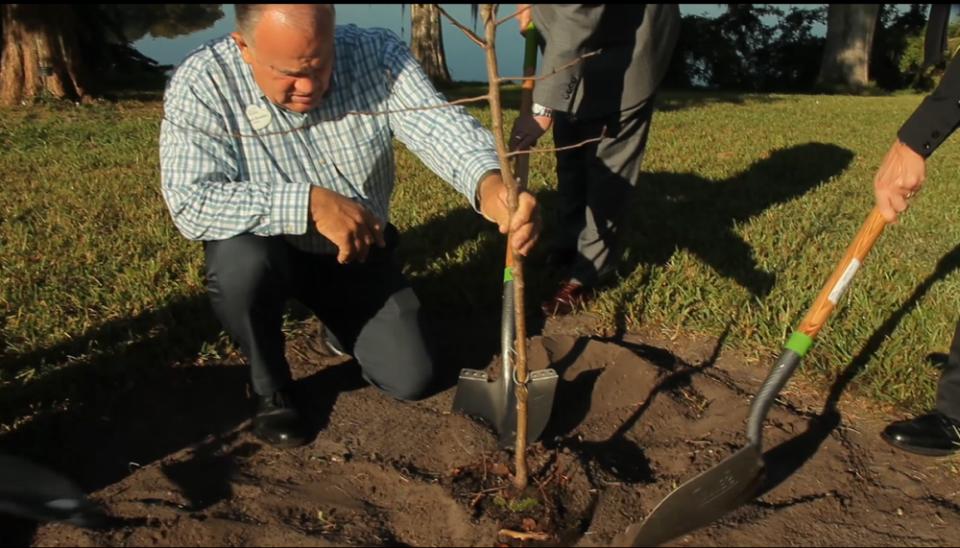 Officials hold shovels as they plant a Survivor Tree seedling at a botanical garden in Orlando.