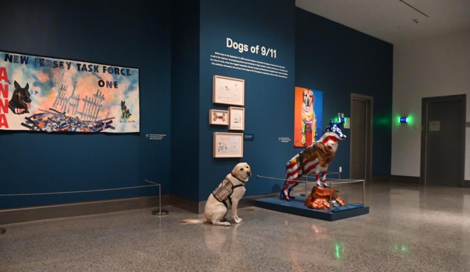 "A yellow Labrador retriever looks over its shoulder and into the camera in front of a dark blue wall framed by the exhibition title ""Dogs of 9/11."""
